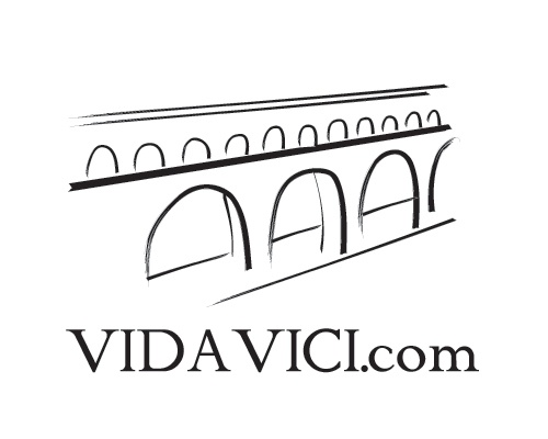 Logo for VidaVici